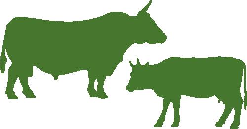 Icon grün für den Produktbereich Rinderställe