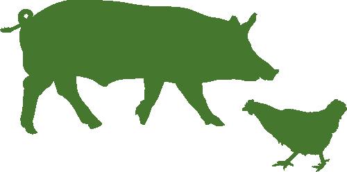 Icon grün für den Produktbereich Schweineställe und Hühnerställe